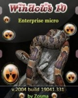 windows 10 enterprise micro