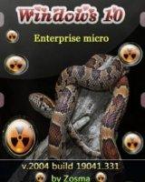 windows 10 enterprise micro