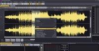 Acoustica Premium 7.3.1
